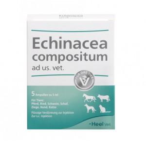Equinacea compositum 5ml