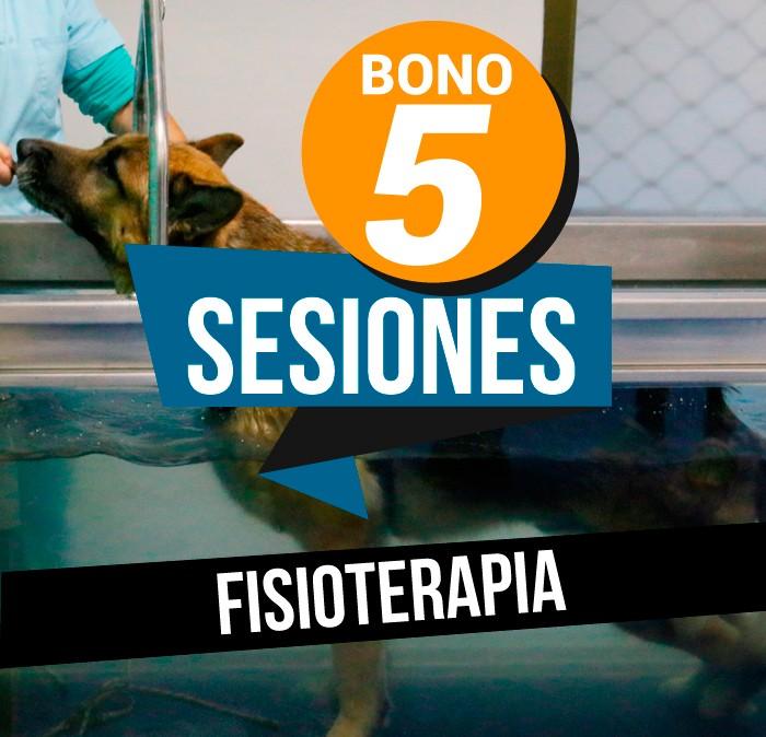 Bono 5 sesiones Fisioterapia Veterinaria