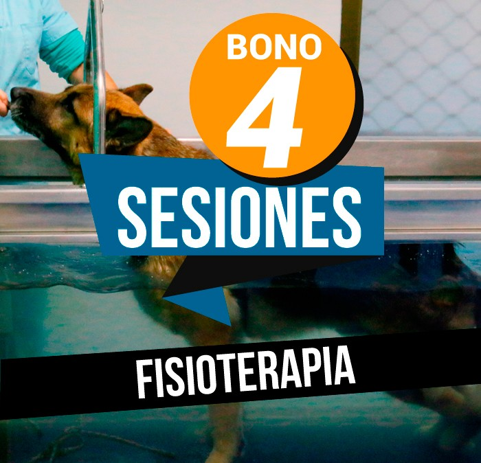 Bono 4 sesiones Fisioterapia Veterinaria